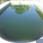 How To Clean My Green Pool